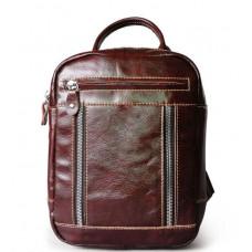 Мужская сумка-рюкзак -T139